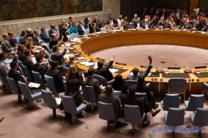 Німеччина в ООН: Ми пропонували Радбез пізніше, але Росія вимагала саме 20 травня