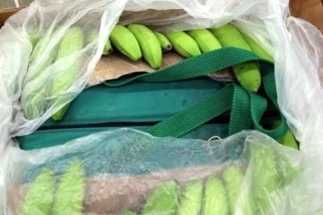Expertos: Ucrania importa cantidad récord de plátanos esta temporada