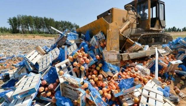 В России уже уничтожили 17 тыс. тонн санкционной продукции