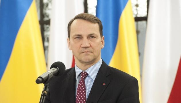 Федерализм для Донбасса и Приднестровья является ловушкой РФ - евродепутат