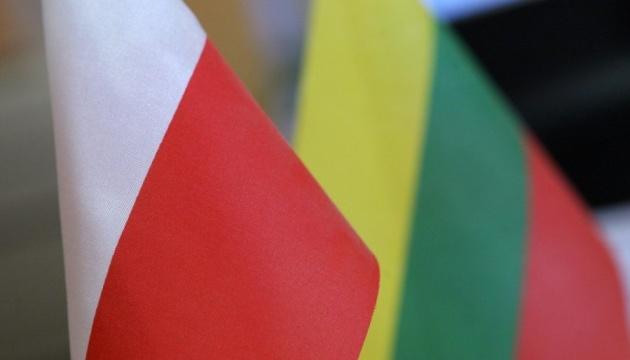 Польша и Литва хотят обновить программу «Восточного партнерства»