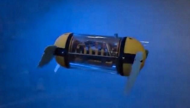 Розроблено робота-черепаху U-CAT, яка буде досліджувати затонулі кораблі