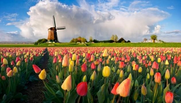 Нідерланди почали головування в ЄС
