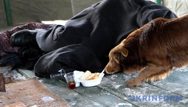 У Маріуполі рятують безхатченків, які замерзають на вулиці