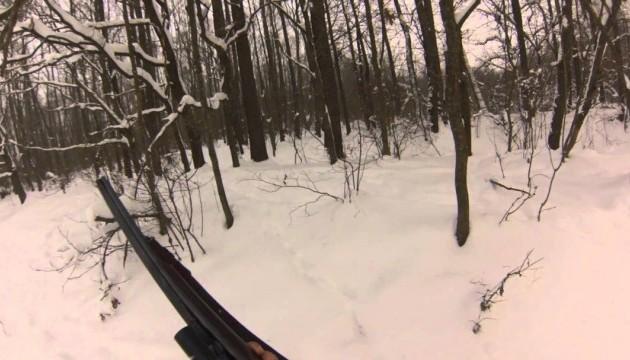 У двох районах Вінниччині заборонили полювання через воєнний стан