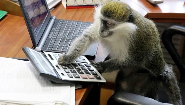 У Сумах через ProZorro таки придбали мавпу та рептилій