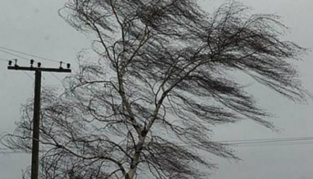 Донецкую область будет штормить ночью и весь день