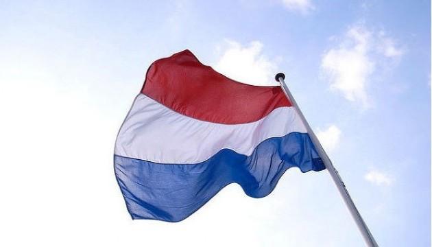 Нідерланди не братимуть участь у військових діях у Сирії