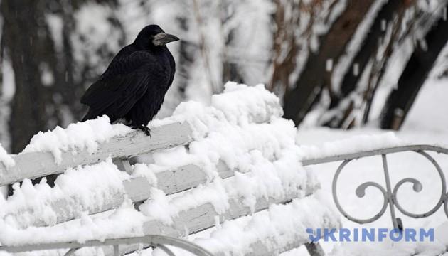 """У деяких областях України """"розгуляється"""" мороз"""