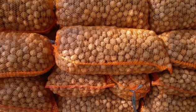 Корисні властивості волоських горіхів. Інфографіка