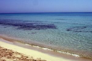 Туреччина поновила дослідження в Середземному морі