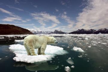 ONU : la planète toujours sur la voie d'un réchauffement catastrophique