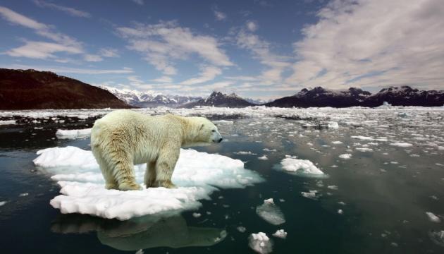 Глобальне потепління: вчені визначили, коли зникнуть 50% флори і фауни