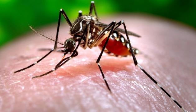 На Запорожье подтвердили 8 случаев лихорадки Западного Нила
