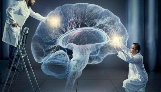 Вчені з'ясували, як формуються спогади