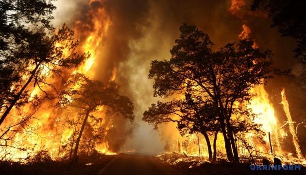 Українців попередили про надзвичайний стан пожежної небезпеки