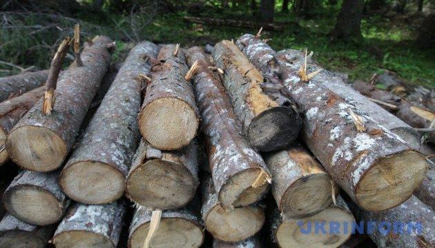 В Румынии исчезают леса