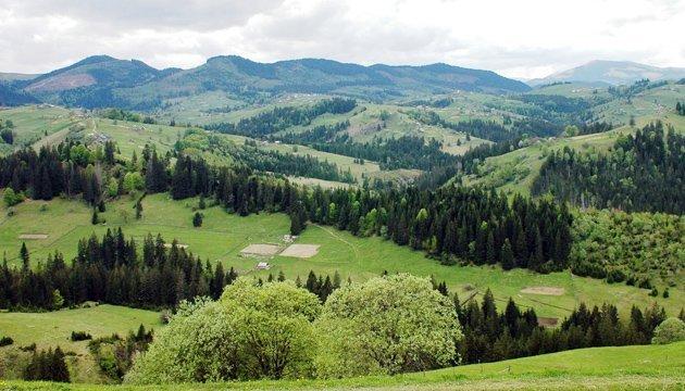 Семерак заборонив санітарні рубки в заповідниках і природних парках