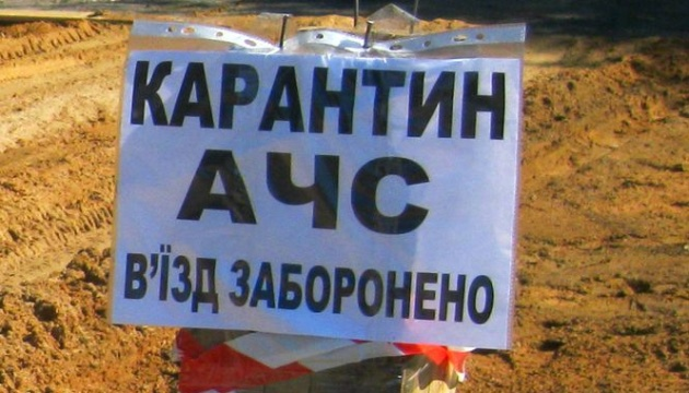 На Київщині - спалах чуми свиней, у районі оголосили карантин