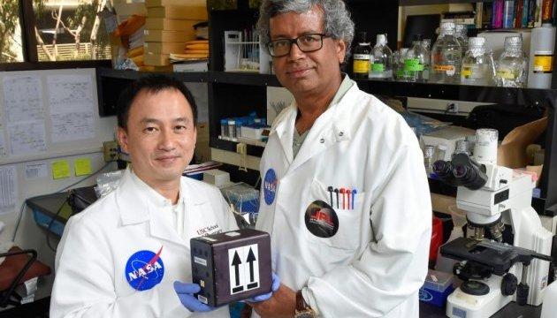 NASA відправлять в космос гриби для створення важливих ліків