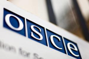 На виборах працюватимуть 66 довготермінових спостерігачів ОБСЄ, ще 600 прибудуть напередодні