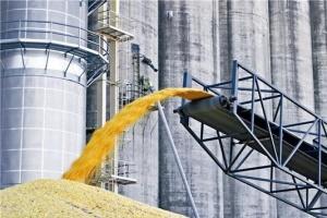 Врожай зернових уже на 5 мільйонів тонн перевищує минулорічний