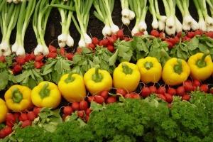 Перевищення нітратів у ранніх овочах виявили на ринках Буковини