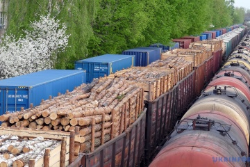Groysman: Government in mid-September to release report on timber smuggling