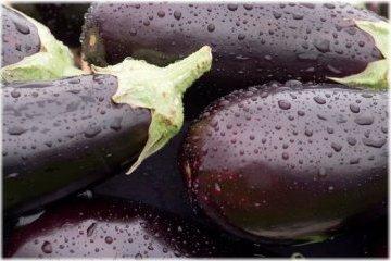 Ucrania exportará ciertos tipos de verduras y frutas a la Unión Europea