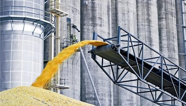 Ukraine's agriculture ministry launches pilot projects in four regions to improve grain quality