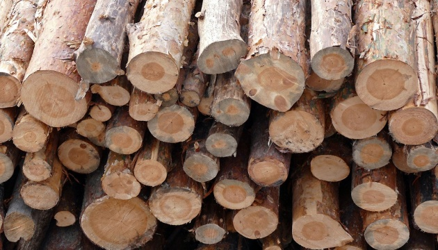 EU claims victory in wood export ban dispute with Ukraine