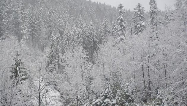 Carpathian Mountains receive up to 20 cm of snow overnight
