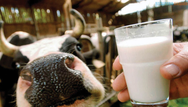 Ukraine considering issue of possible meat and milk imports from Ireland