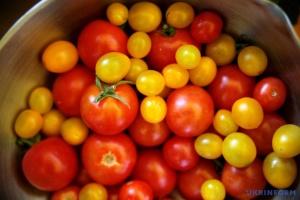 В Україні зросли оптові ціни на томати - експерти