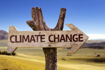 L'Ukraine se retrouve à la 17e place dans le classement de l'efficacité de la lutte contre le changement climatique