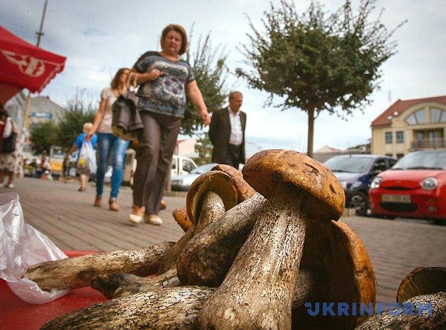 Фото: Сергій Гудак, Укрінформ
