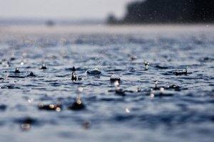 На Закарпатті через сильні зливи підтопило табір ромів