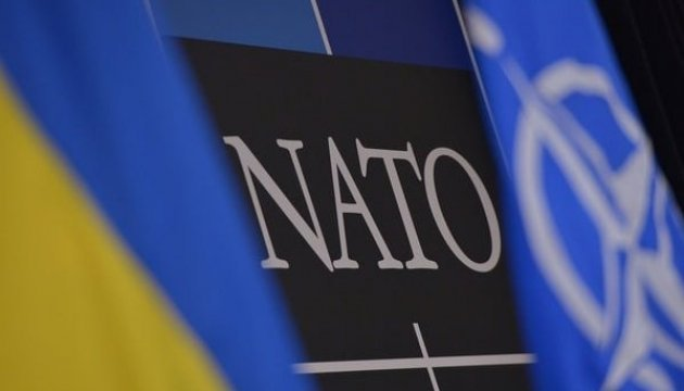 Parubiy supports holding of referendum on NATO membership