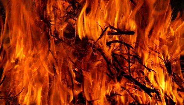 У Канаді - кілька лісових пожеж, оголосили евакуацію
