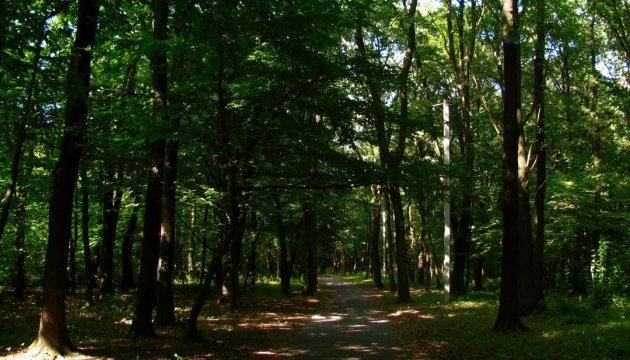У Києві біля озера Срібний кіл облаштують парк відпочинку