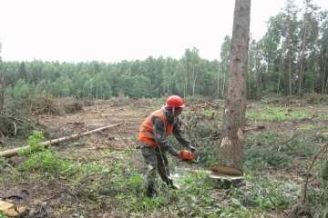 Shmyhal discusses problems of forest industry with woodworkers of Zhytomyr region
