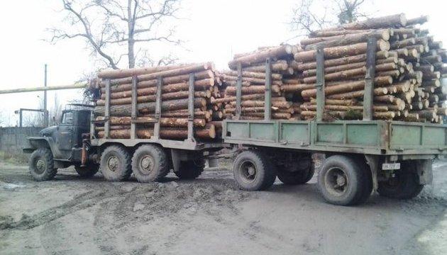 ДФС за півроку порушила 39 справ за незаконне переміщення деревини