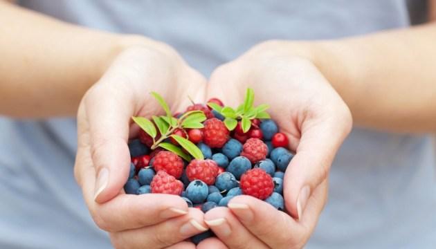 Experto: Exportación de bayas frescas ucranianas ha aumentado 17 veces en 4 años