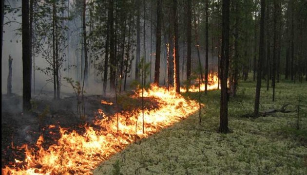 Emergency Service warns Ukrainians of critical fire weather conditions
