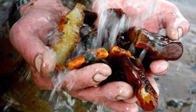 На Житомирщині виставлять на аукціон 23 ділянки з покладами бурштину
