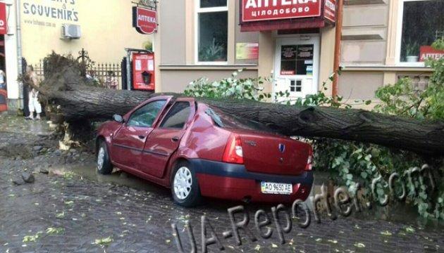 Буревій на Закарпатті повалив дерева і потрощив автівки