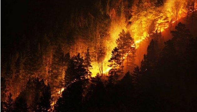 В Калифорнии продолжаются лесные пожары: еще 700 человек эвакуировали