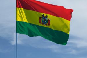 Експрезидента Болівії обвинувачують у тероризмі