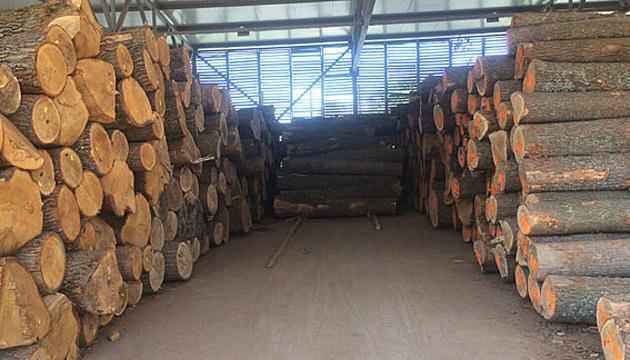 На Хмельниччині СБУ блокувала механізм незаконного експорту деревини до ЄС