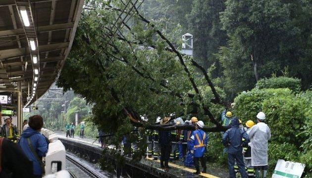 Тайфун в Японии: в доме престарелых нашли тела девяти человек